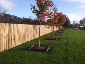 Kerbing and Fencing